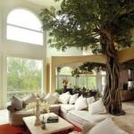 Come mettere un albero nel salone